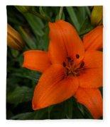 Hot Orange Lily  Fleece Blanket