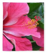 Hot Pink Hibiscus 2 Fleece Blanket