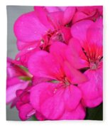 Hot Pink In February Fleece Blanket
