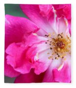 Hot Pink Rose Fleece Blanket
