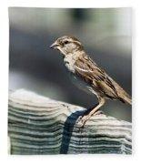House Sparrow Fleece Blanket