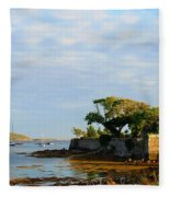 House With A View Fleece Blanket