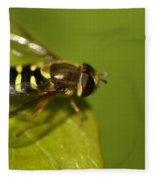Hoverfly On A Leaf Fleece Blanket