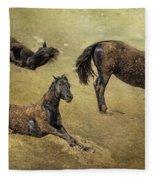 How A Black Horse Turns Brown - Pryor Mustangs Fleece Blanket