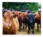 How Now Brown Cow Fleece Blanket