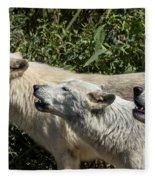 Howlin Artic Wolves Fleece Blanket