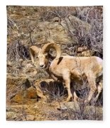 Huge Bighorn Fleece Blanket