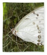 Huge White Morpho Butterfly Fleece Blanket
