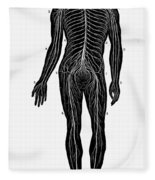 Human Nervous System Fleece Blanket