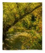 Humber River 5 Fleece Blanket