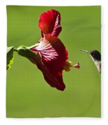 Hummer At The Hibiscus Fleece Blanket