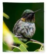 Humming Bird Fleece Blanket