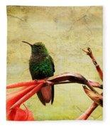 Hummingbird 1 Fleece Blanket