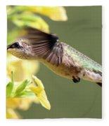 Hummingbird 3725 Fleece Blanket