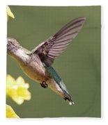 Hummingbird 3731 Fleece Blanket
