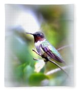 Hummingbird - Beautiful Fleece Blanket