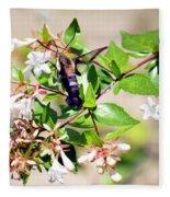 Hummingbird Clearwing Moth Fleece Blanket