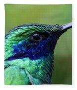 Hummingbird Closeup Fleece Blanket