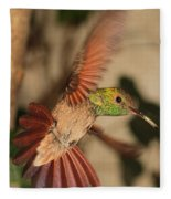 Hummingbird I Fleece Blanket