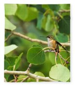 Hummingbird In Tree Fleece Blanket