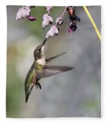 Hummingbird - Little Sipper Fleece Blanket