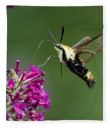Hummingbird Moth Fleece Blanket