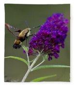 Hummingbird Moth Iv Fleece Blanket