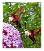 Hummingbird Moths Fleece Blanket