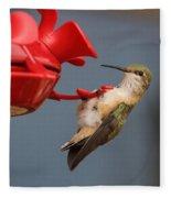 Hummingbird On Feeder Fleece Blanket