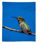 Hummingbird Posing Fleece Blanket