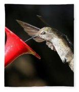 Hummingbird Sigh Fleece Blanket