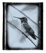 Hummingbird With Old-fashioned Frame 1 Fleece Blanket