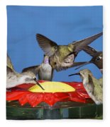 Hummingbirds At Feeder Fleece Blanket