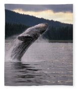 Humpback Whale Breaching Fleece Blanket