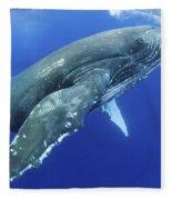 Humpback Whale Near Surface Fleece Blanket