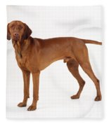 Hungarian Vizsla Dog Fleece Blanket