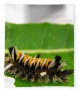 Hungry Hairy Caterpillar Fleece Blanket