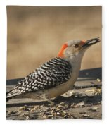 Hungry Red-bellied Woodpecker - Melanerpes Carolinus Fleece Blanket