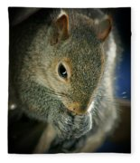 Hungry Squirrel Fleece Blanket