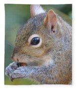 Hungry Squirrel Fleece Blanket