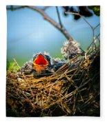 Hungry Tree Swallow Fledgling In Nest Fleece Blanket
