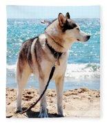 Husky On The Beach Fleece Blanket