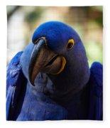Hyacinth Macaw Fleece Blanket