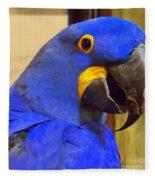 Hyacinth Macaw Portrait Fleece Blanket