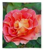 Hybrid Tea Rose  Fleece Blanket