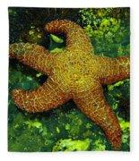 I Found A Starfish Fleece Blanket
