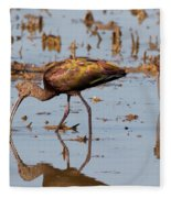Ibis Feeding On Winter Wetlands Fleece Blanket