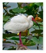 Ibis In Pond Fleece Blanket