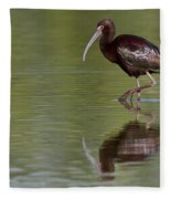 Ibis Reflection Fleece Blanket