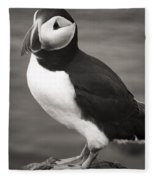 Iceland Puffin Fleece Blanket